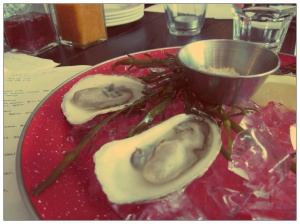 Oysters at the Samuel J Moore